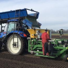 Lelies planten met rollenzeefplanter Drenthe 2018