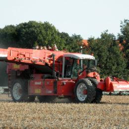 Aardappels rooien Dewulf RA3060 2009